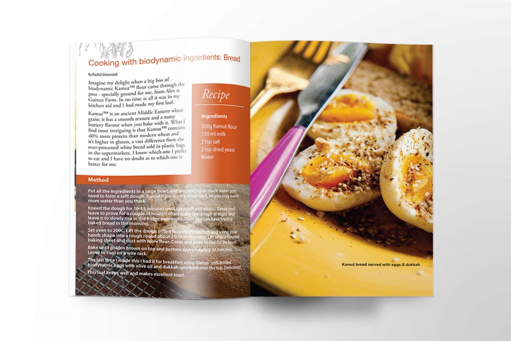 NewsLeaf_Recipe_Magstyle